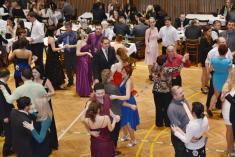 1.2.2014 - Hasičský ples