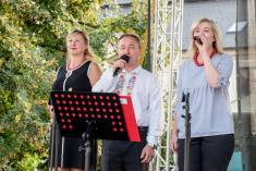 8.9.2018 - Slavnosti vína v Uh. Hradišti
