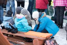 22.1.2017 - Dětský karneval na ledě