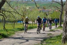 25.4.2015 - Na kole vinohrady